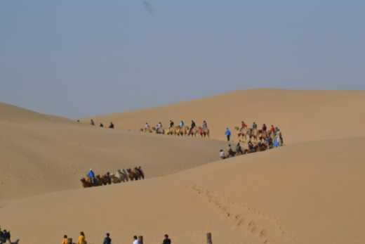 6 days connecting tour for Shanxi and Inner Mongolia tour reviews