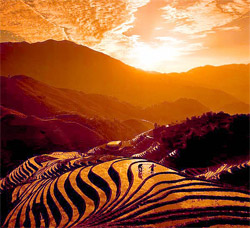 1 Day Longji Terrace Coach Tour