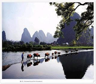 1 Day Li River Coach Tour & Yangshuo