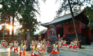 2 Days Tour: Longmen Grottoes and Shaolin Temple (by train) pictures