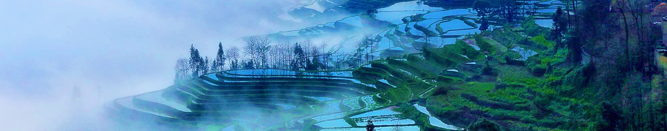 Amazing Longji Terrace