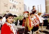 11 day Silk road tour from Beijing pictures