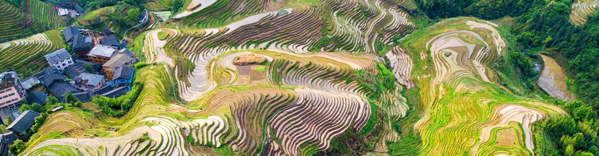 1 Day Longji Terraced Fields and Minority Villages Tour