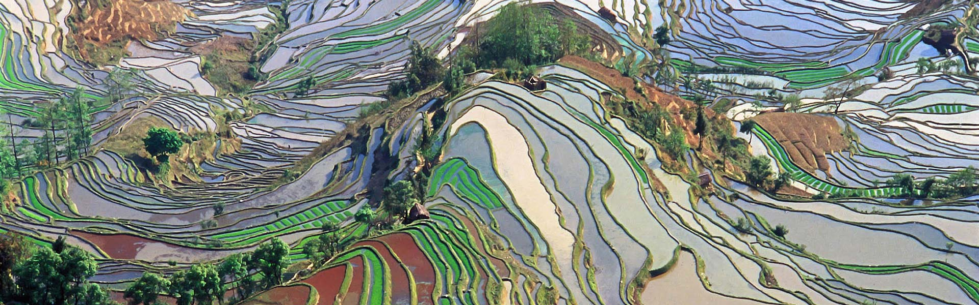 3 Days Jianshui and Yuanyang Hani Rice Terraces Group Tour