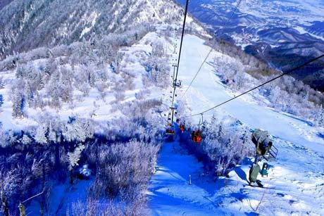 4-Day 3-Night Skiing Tour Package