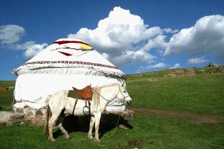 6 days connecting tour for Shanxi and Inner Mongolia tour