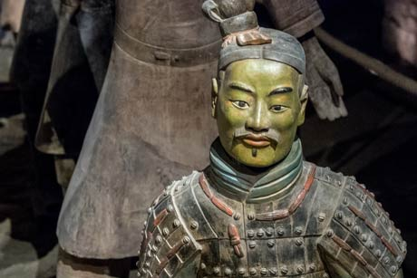 Half Day Tour: Terracotta Warriors
